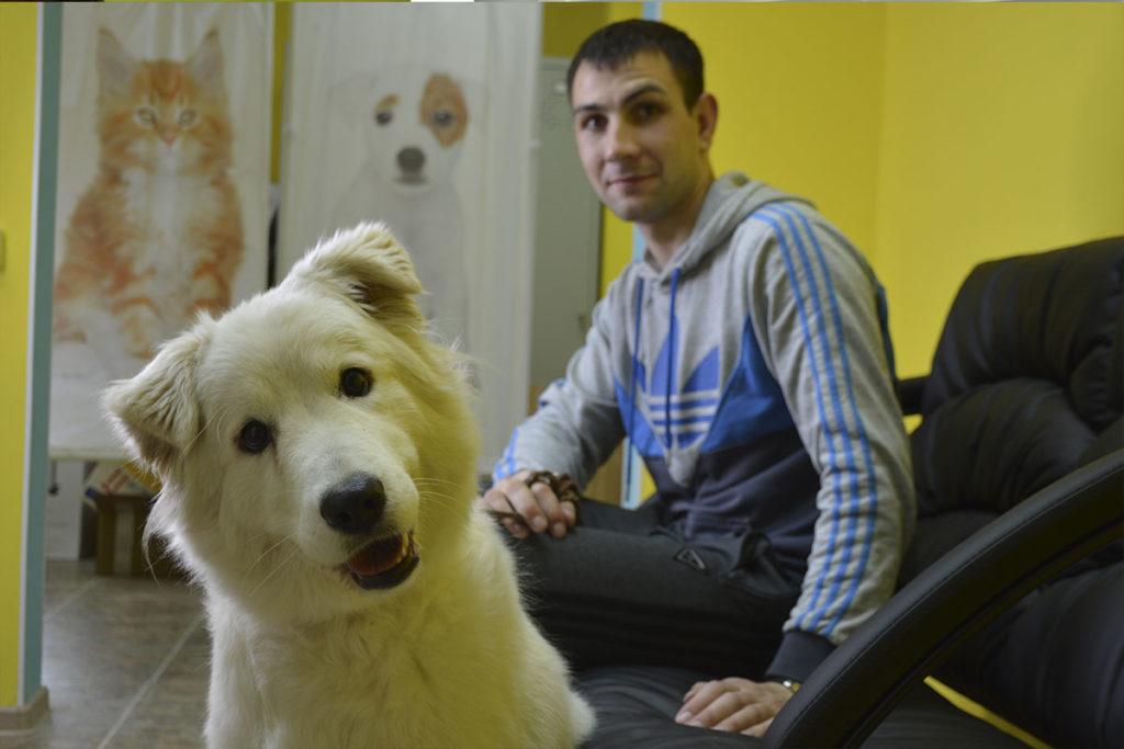 Терапия животных в омске